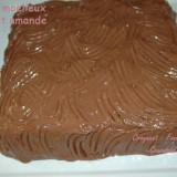 Gâteau moelleux choolat-amande - DSC_5727_14086