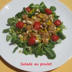 Salade au poulet IMG_5588_33689