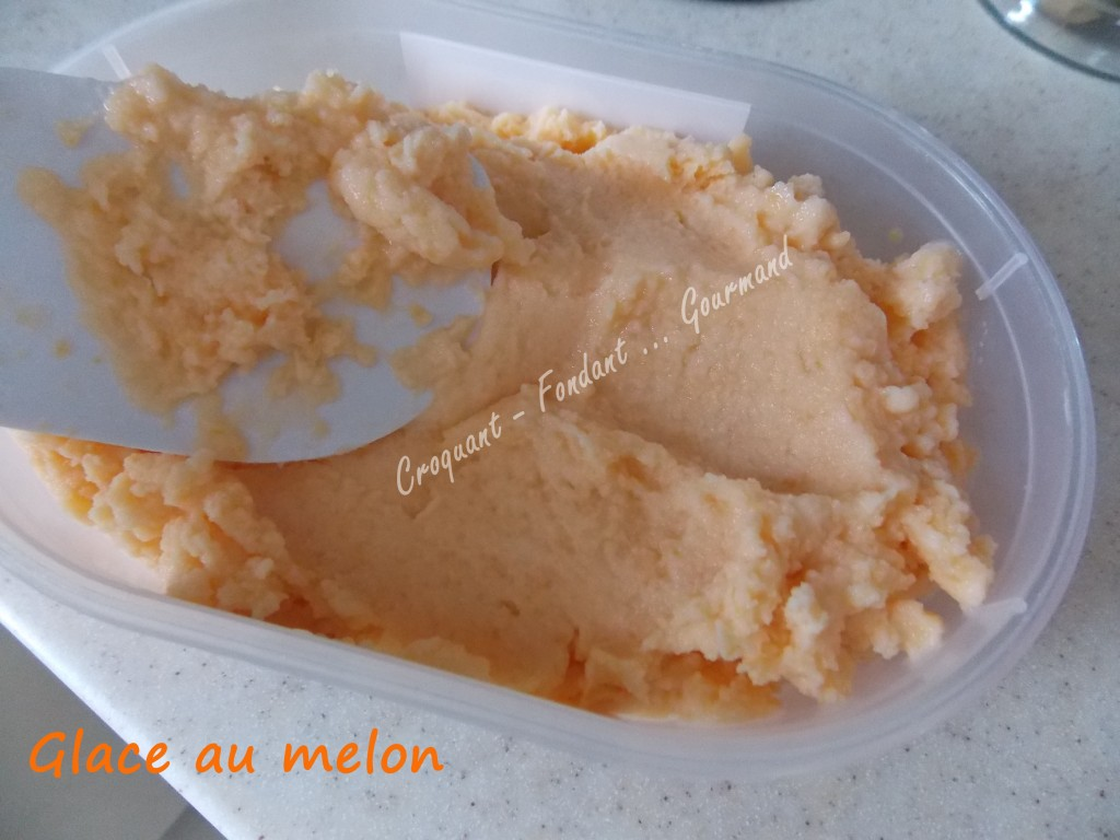 Glace au melon DSCN3841_34039