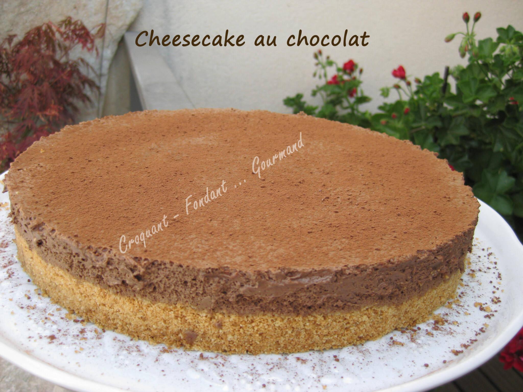 Gateau croustillant au chocolat sans cuisson