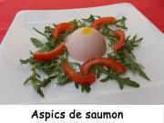 Aspics de saumon Index DSCN8234
