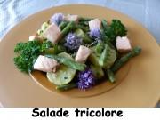 Salade tricolore Index P1030830