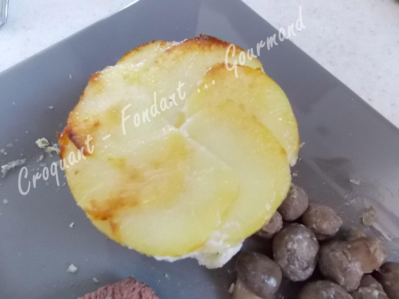 Gratins de pommes de terre DSCN2238_31924