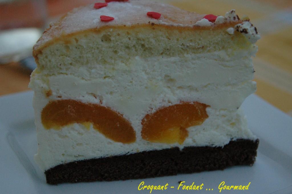 Cheesecake aux abricots - aout 2009 096 copie