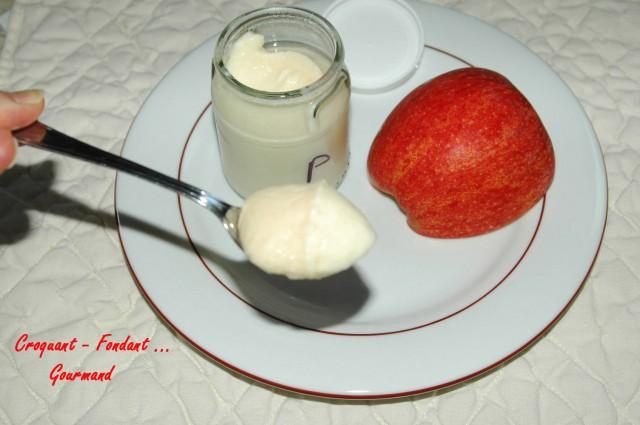 Yaourts à la pomme - DSC_6409_4248