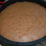 Gâteau glacé au chocolat - DSC_7408_5217