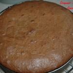 Gâteau glacé au chocolat - DSC_7411_5220