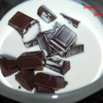 Gâteau glacé au chocolat - DSC_7424_5233