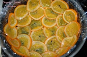Rosace à l'orange - DSC_5562_13922