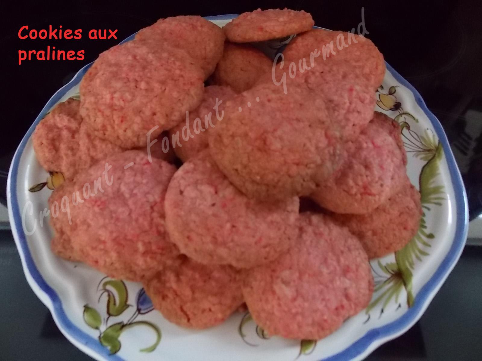 Cookies aux pralines DSCN6130_26186