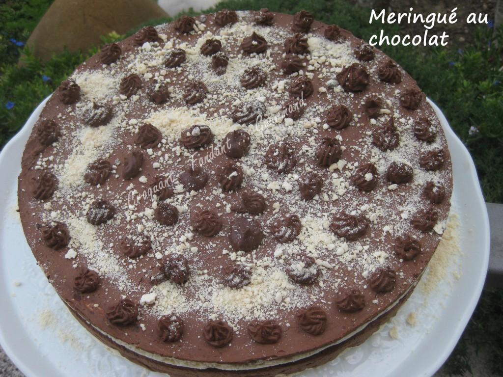 Meringué chocolat IMG_5475_33422