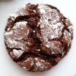 Biscuits craquelés au chocolat à vous de jouer les crocs du Loupinet 2