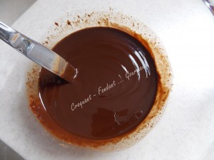Moelleux chocolat 1990 DSCN5534_36302