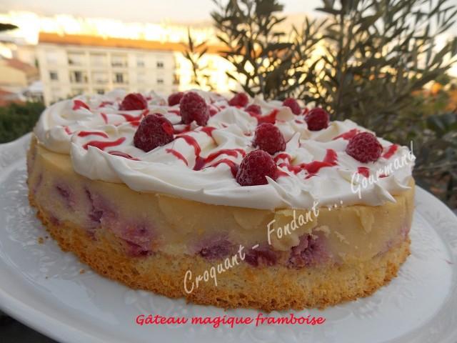 Gâteau magique framboise DSCN0385