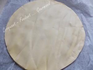Soleil citron-chocolat DSCN0581
