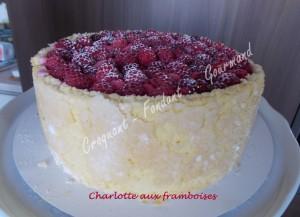 Charlotte aux framboises DSCN2810