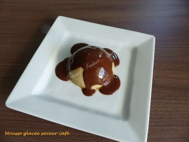 Mousse glacée saveur café P1030999
