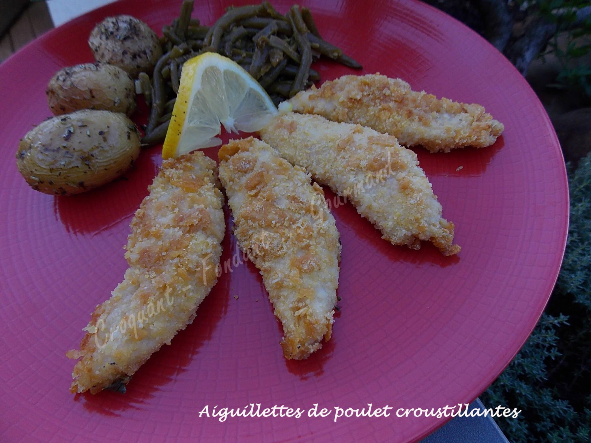 Aiguillettes de poulet croustillantes DSCN6014