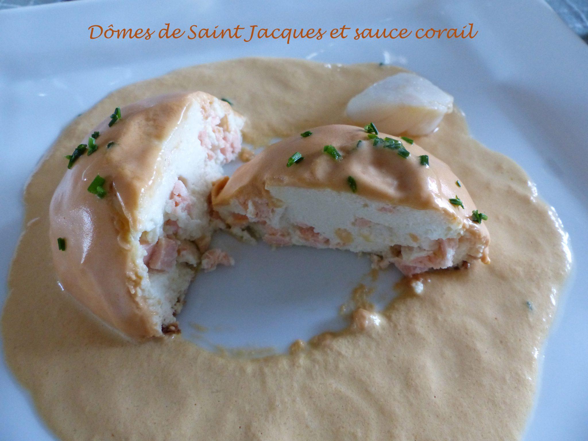 Dômes de Saint Jacques et sauce corail P1060810 R