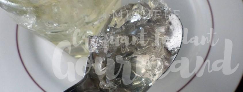 Glaçage neutre de Christophe Felder P1170770 R