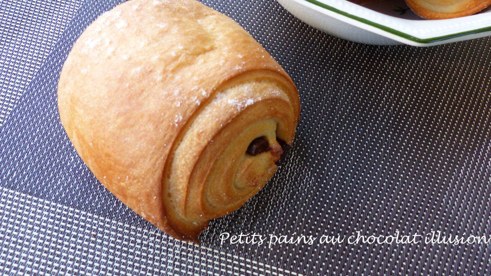 Petits pains au chocolat illusion P1120395 R