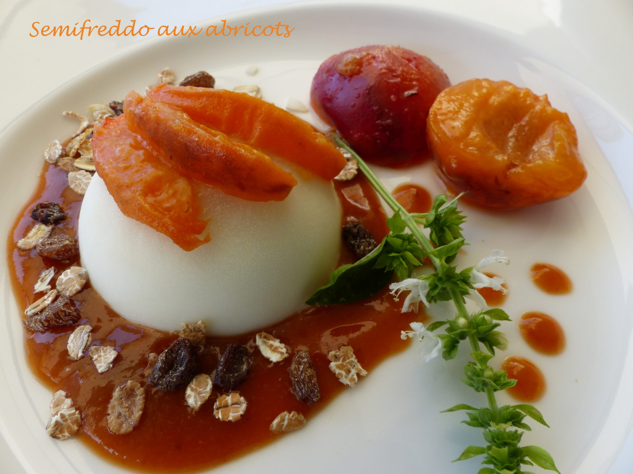 Semifreddo aux abricots P1120116 R