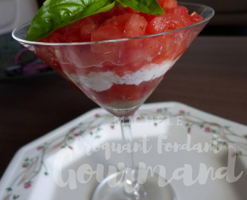 Tiramisu tomates chèvre et basilic P1190664 R