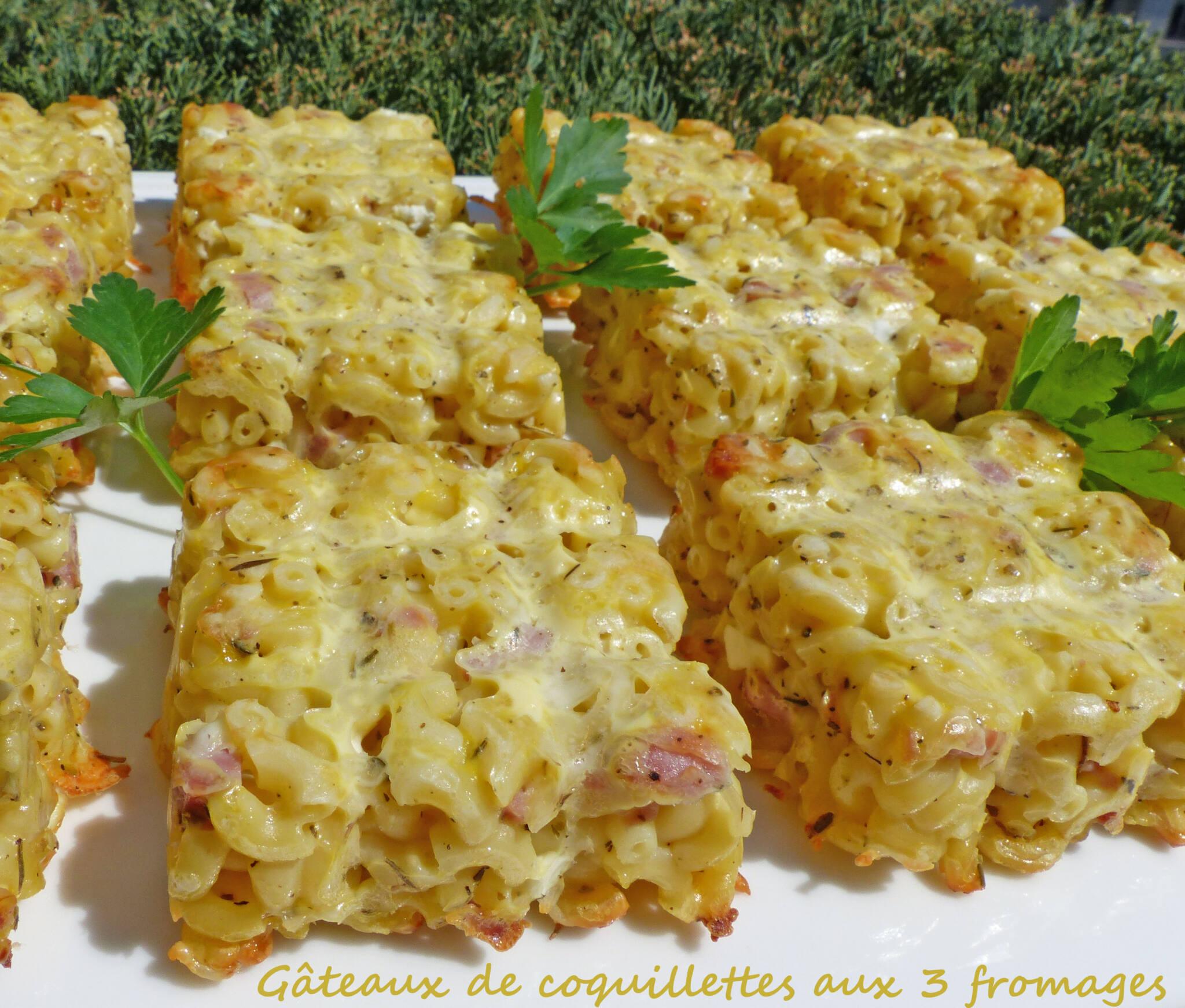 Gâteaux de coquillettes aux 3 fromages P1240053 R